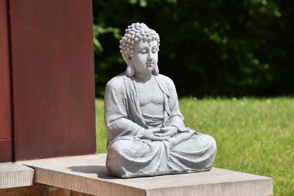 NIEUW: Dru Yoga Senioren